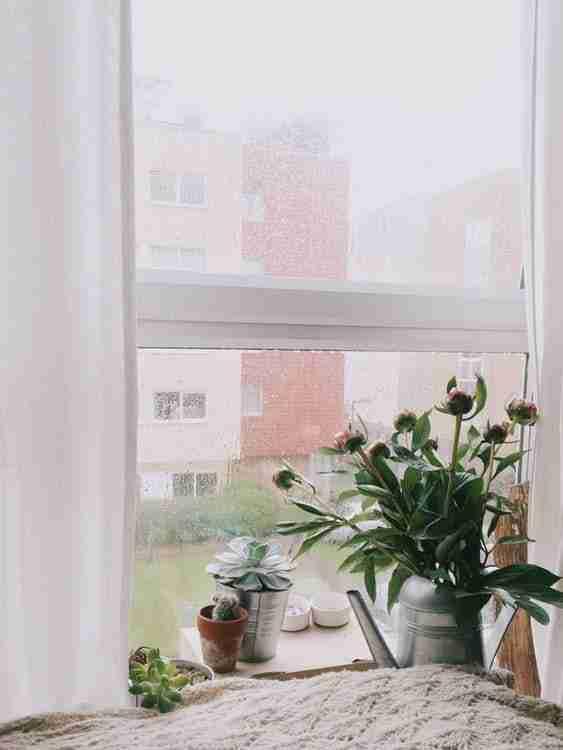 replacement window benefits